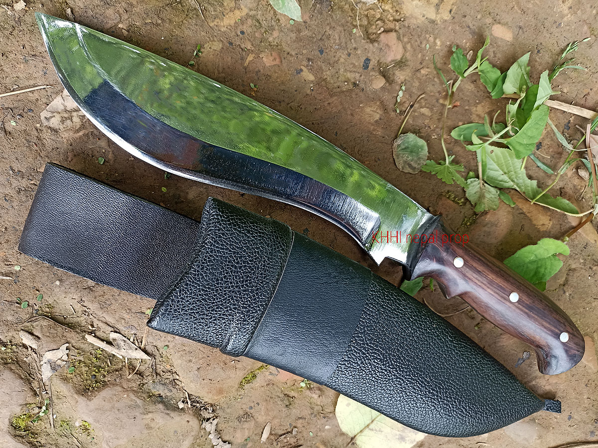 9 inch Recurve Bowie Knife (Handy)
